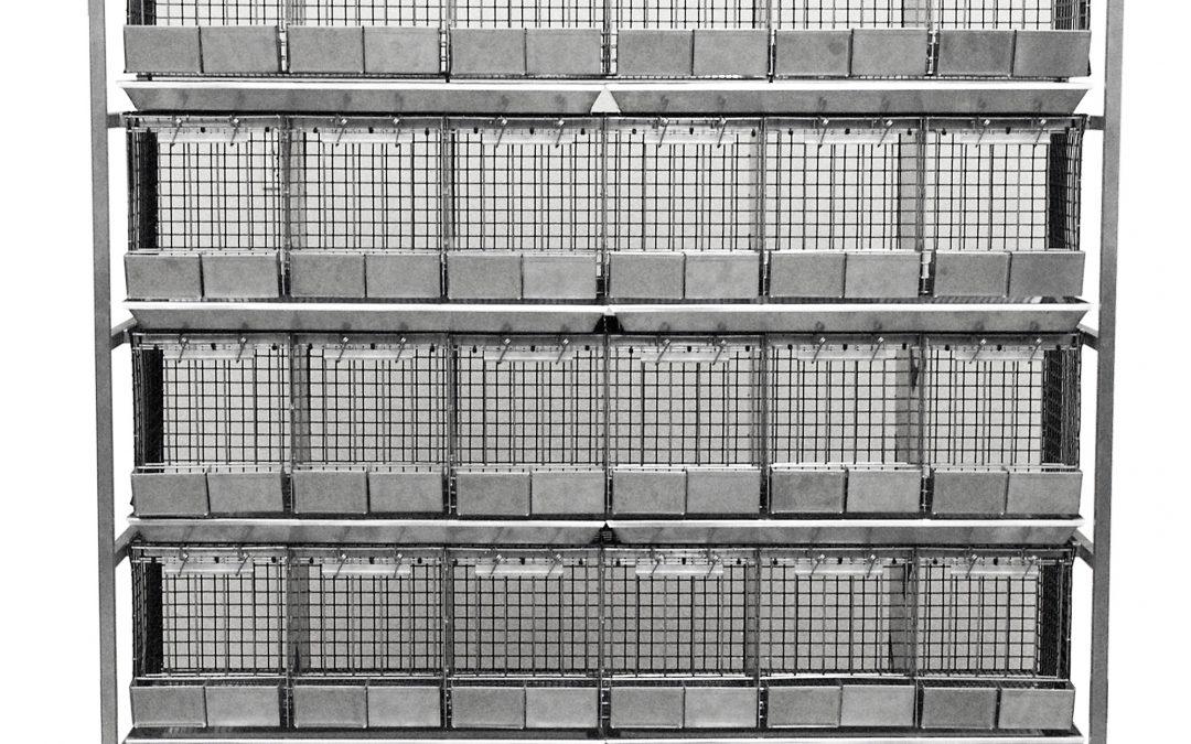 Pigeon 24-Cage Housing Unit