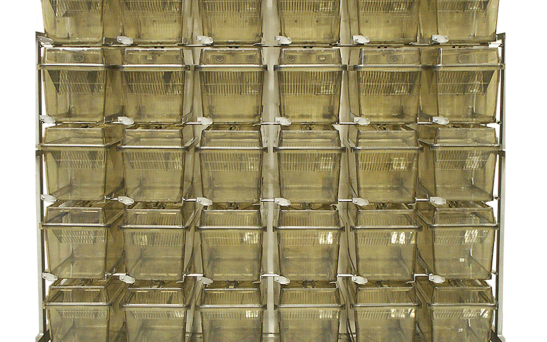 MACS Rat Wall Mount Main Frame Ventilated Caging System